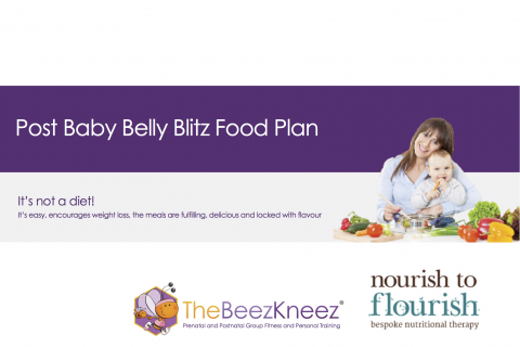 Post Baby Food Plan Final Cover