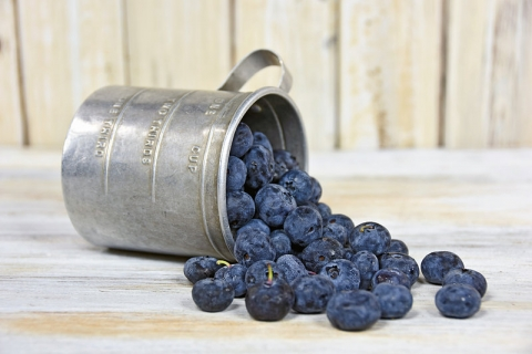 Blueberries in tin cup-small